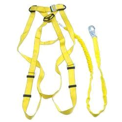 Where to find Safety Harness   lanyard in Marion